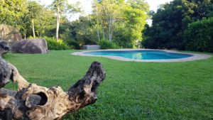 Take a dip in the Lidwala Lodge's swimming pool